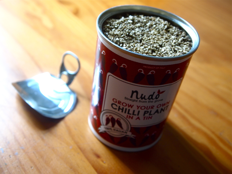 Chillies in a tin